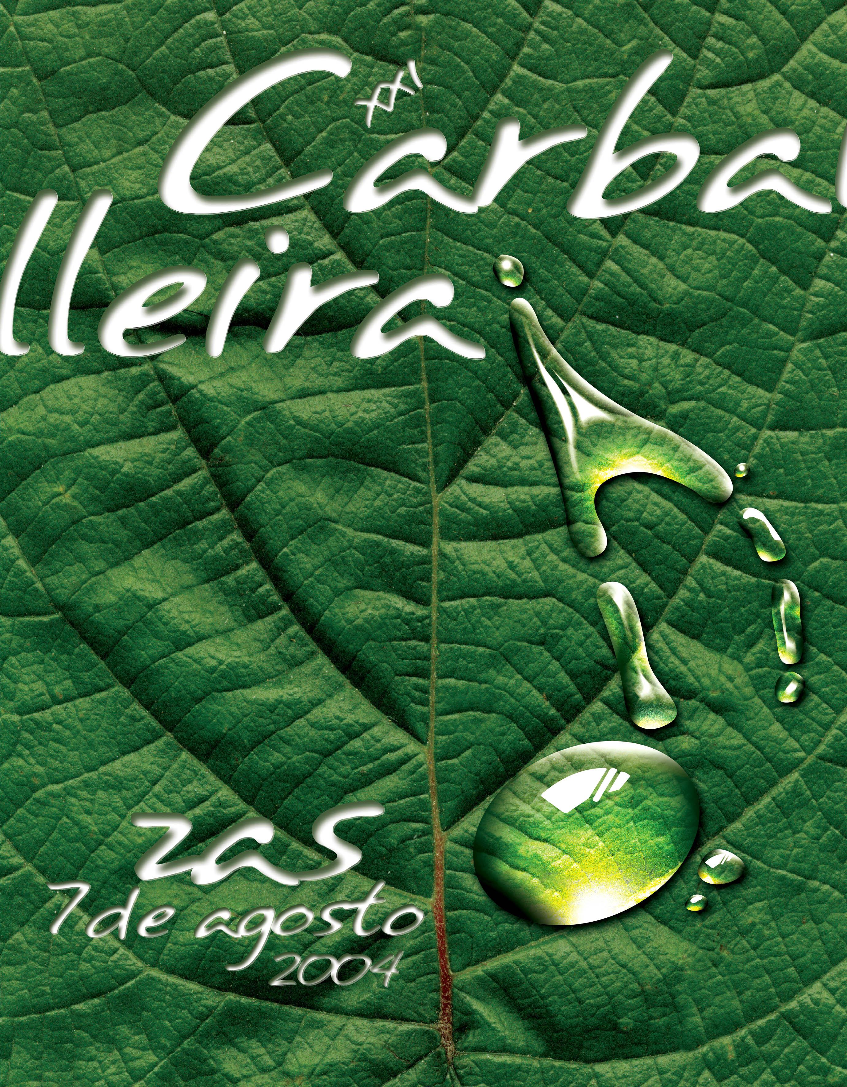 Cartel Festa Carballeira 2004