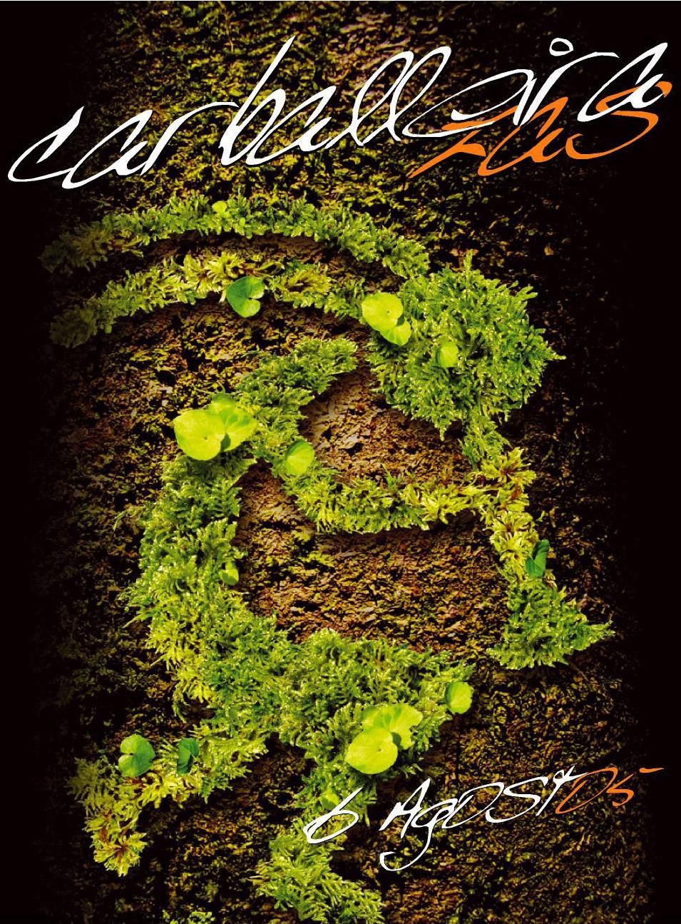 Cartel Festa Carballeira 2005