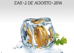 Cartel Festa Carballeira 2014
